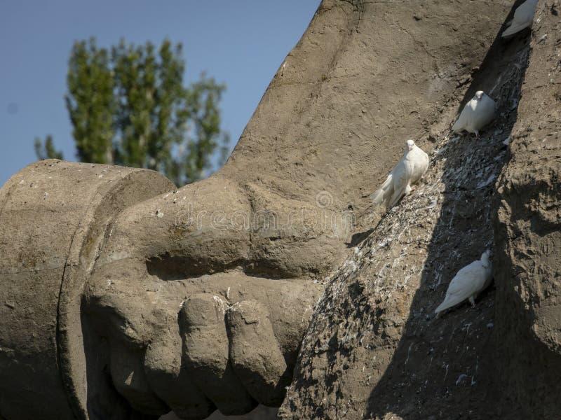 Die weiße Taube des Friedens auf Skulptur-Aufenthalt zum Tod stockfoto