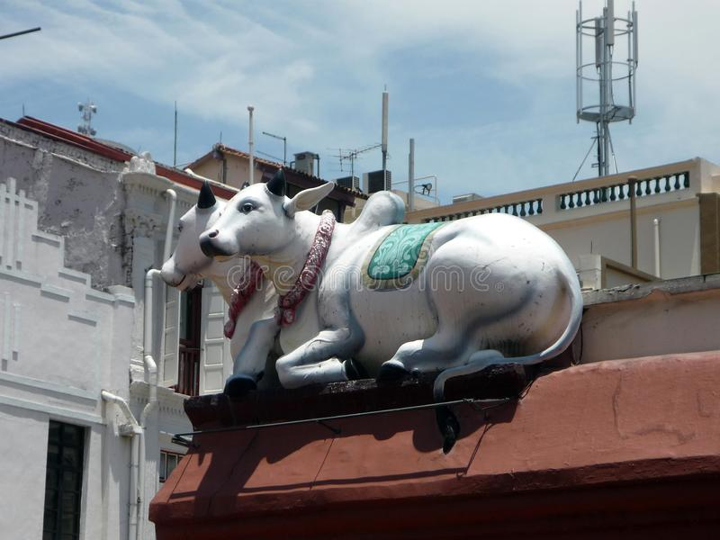 Die weißen Kühe der Stechpalmenkuh-Statue zwei, die auf Dach sitzen, übersteigen lizenzfreies stockbild