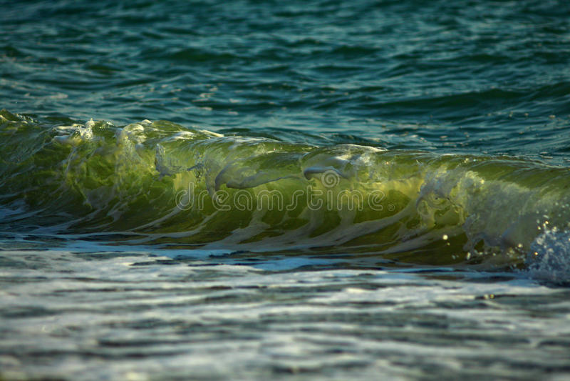 Die Welle hervorgehoben durch die Sonne lizenzfreie stockbilder