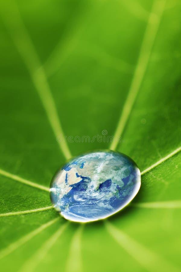 Die Welt in einem Wassertropfen lizenzfreies stockfoto