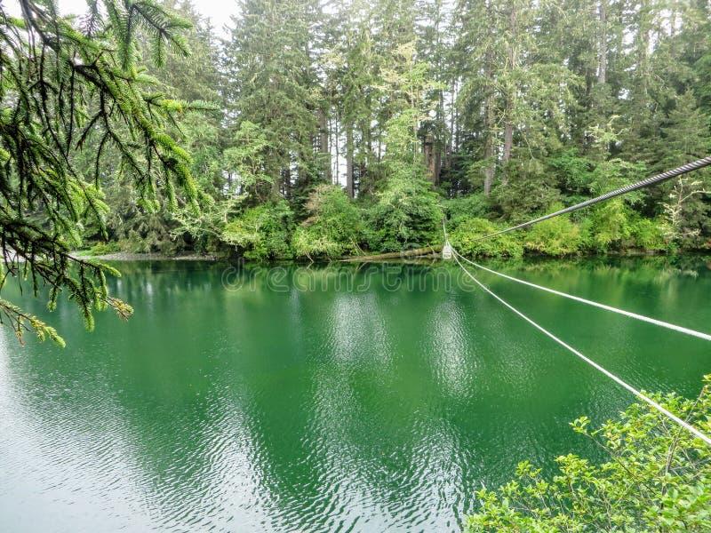 Die Westküstenhinterdrahtseilbahn oder die Laufkatze, die über einen schönen grünen Türkisfluß überschreiten stockbilder