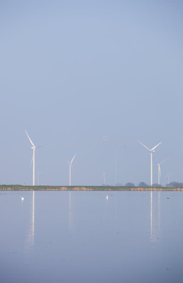 Die Windkraftanlagen und blauer Himmel, die im Wasser von eemmeer nahe reflektiert werden, huizen in Holland lizenzfreie stockbilder