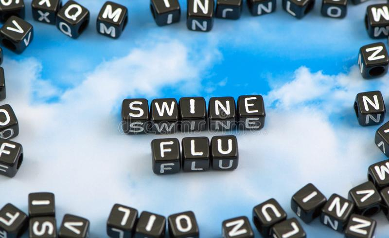 Die Wort Schweinegrippe lizenzfreie stockbilder