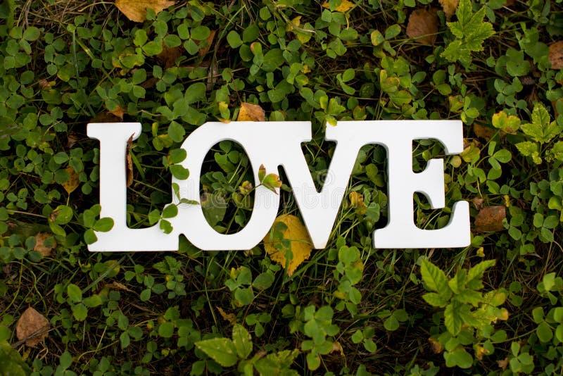 Die Wortliebe auf einem grünen Hintergrund Ein Zeichen, das Liebe sagt stockbild