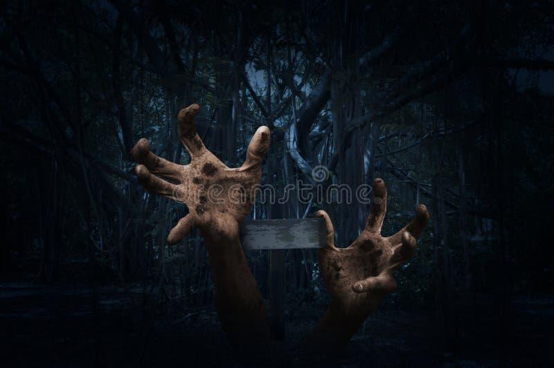 Die Zombiehand, die heraus vom Boden mit steigt, kreuzen vorbei gespenstischen Wald lizenzfreie stockbilder