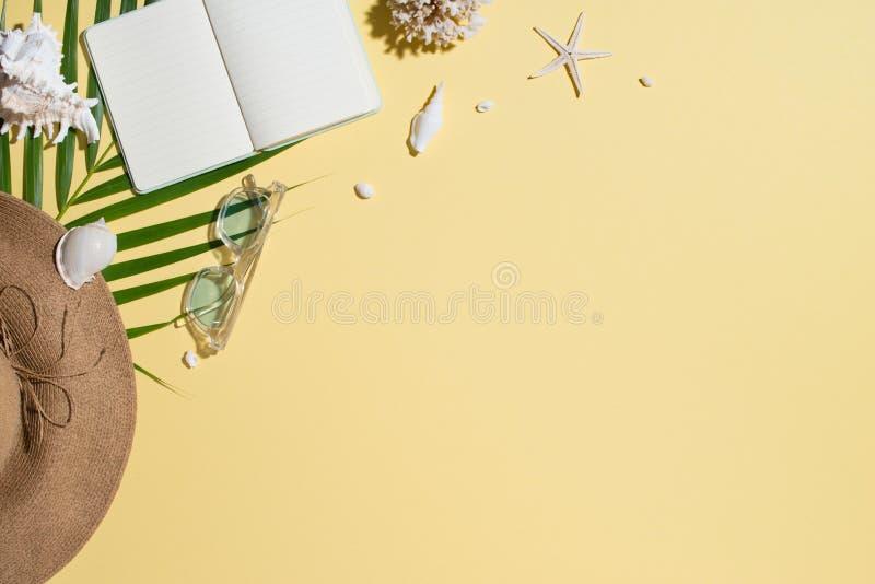 Die zufälligen modischen ledernen Sandalen der Frau für Sommerferienausstattungen auf Farbpastellhintergrund mit Palmblatt lizenzfreie stockfotos
