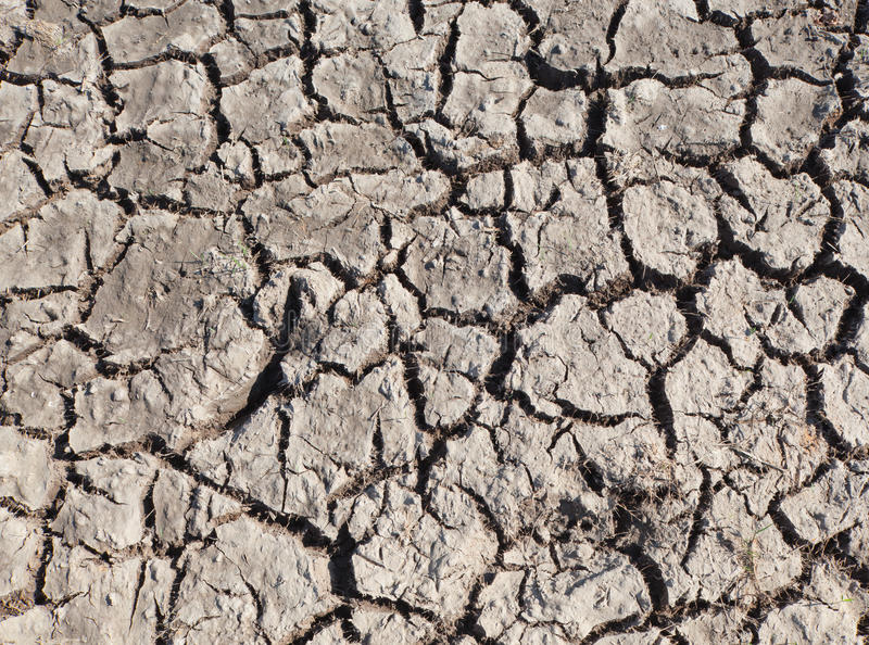 Died and cracked soil. Global warming , died and cracked soil stock image