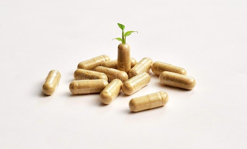 Dieet supplementen royalty-vrije stock afbeelding