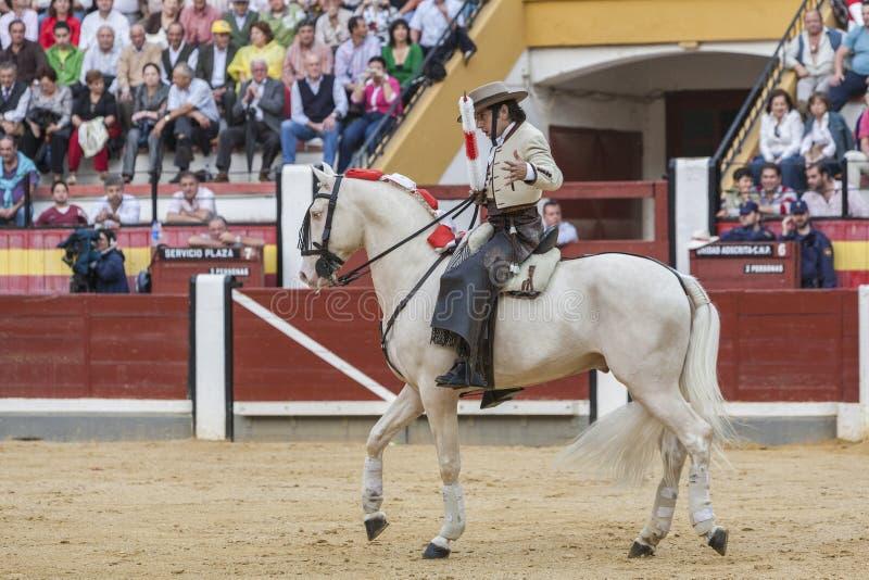 Diego Ventura, bullfighter on horseback spanish, Jaen, Spain. Jaen, SPAIN - October 13, 2008: Diego Ventura, bullfighter on horseback spanish, in the bullring in royalty free stock image