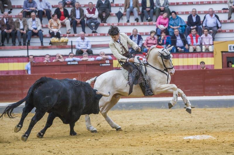 Diego Ventura, bullfighter on horseback spanish, Jaen, Spain. Jaen, SPAIN - October 13, 2008: Diego Ventura, bullfighter on horseback spanish, in the bullring in stock image