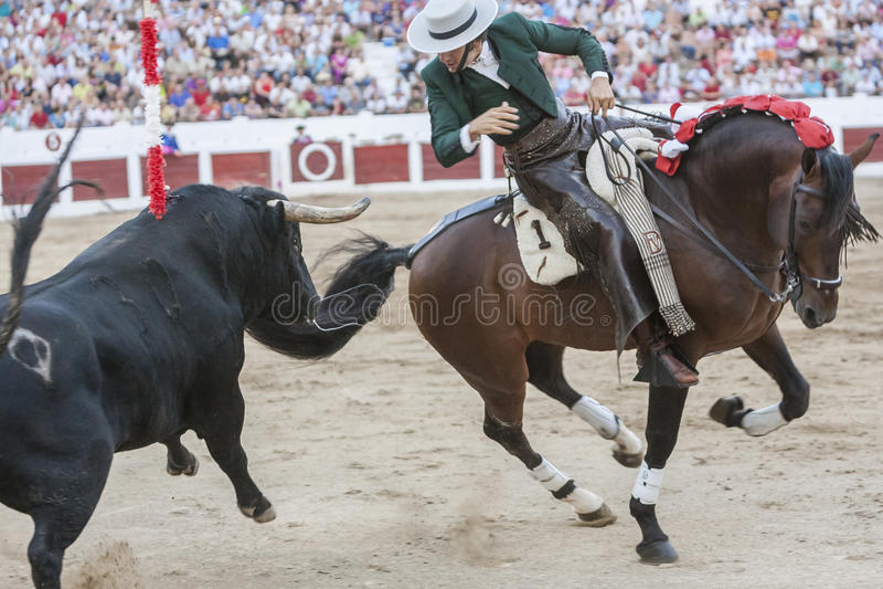 Diego Ventura, bullfighter on horseback spanish, Linares, Jaen,. Linares, SPAIN - August 31, 2011: Diego Ventura, bullfighter on horseback spanish in the royalty free stock photography