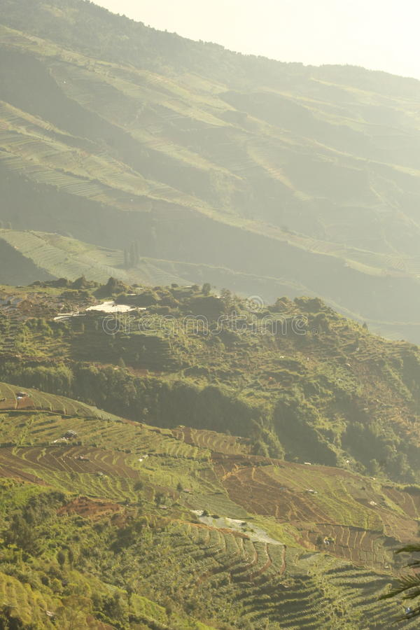 Dieng Wonosobo, Central Java, Indonesia stock photo