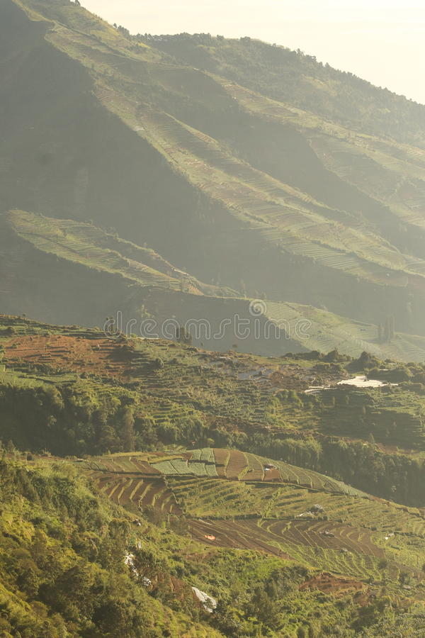 Dieng Wonosobo, Central Java, Indonesia stock images