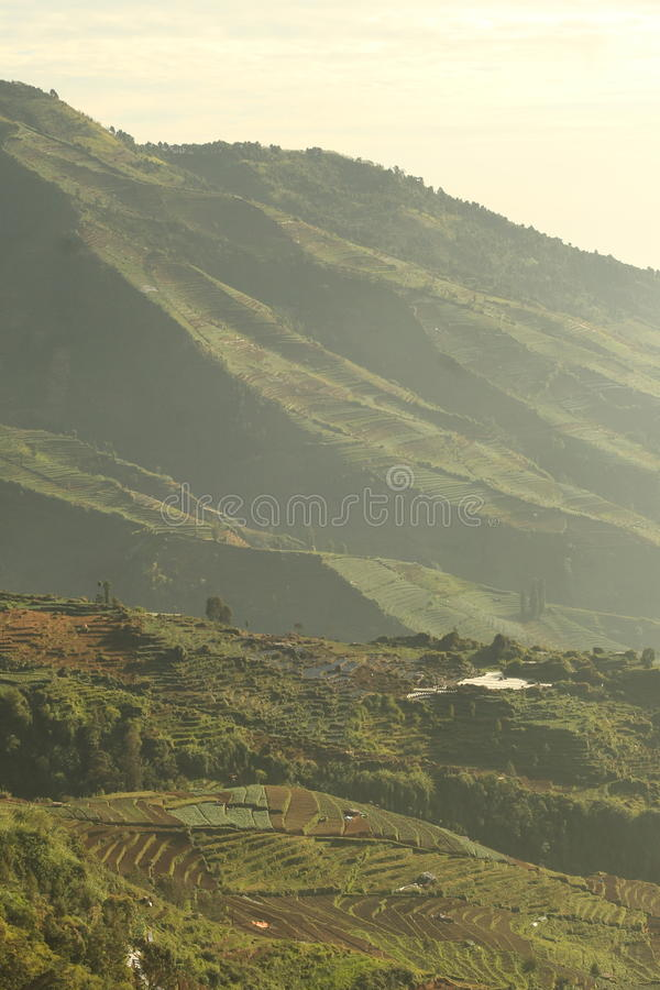 Dieng Wonosobo, Central Java, Indonesia royalty free stock photography