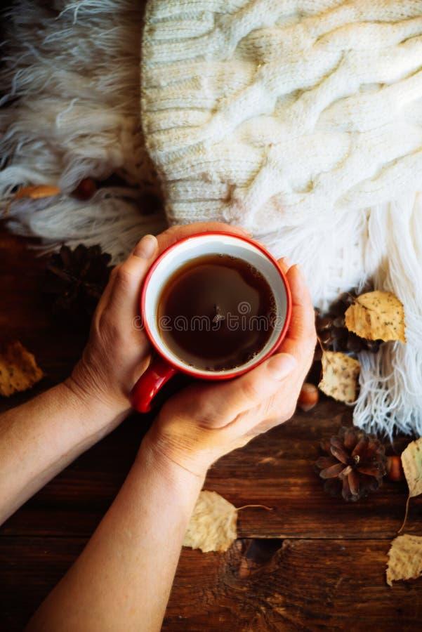 Dient rode gebreide handschoenen in houdend een hete kop van koffie tegen gele bladerenachtergrond Concept de herfsttijd, warmte  royalty-vrije stock afbeelding