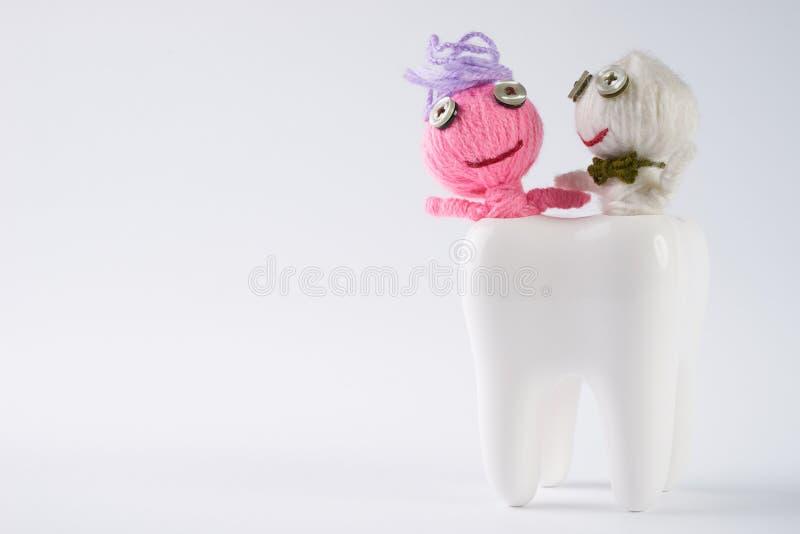 Diente con las muñecas lindas atacadas por las bacterias en blanco del aislante imagen de archivo