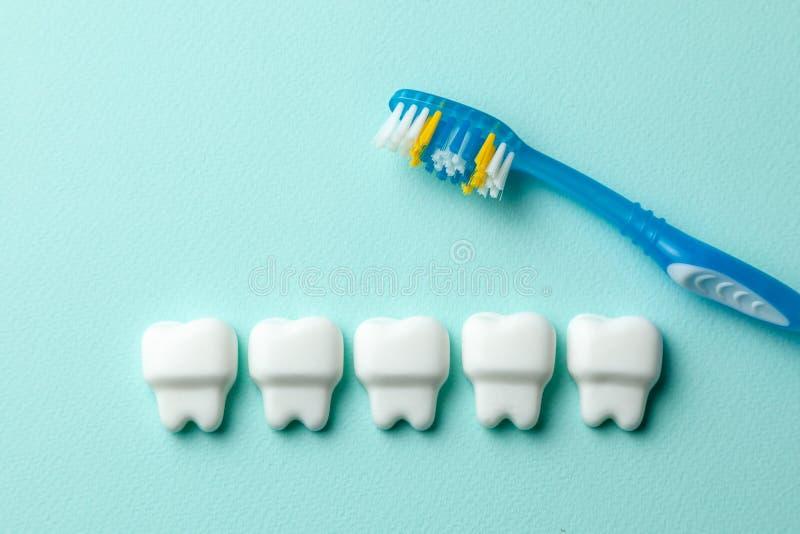 Dientes blancos sanos en fondo del verde menta con el cepillo de dientes imagen de archivo