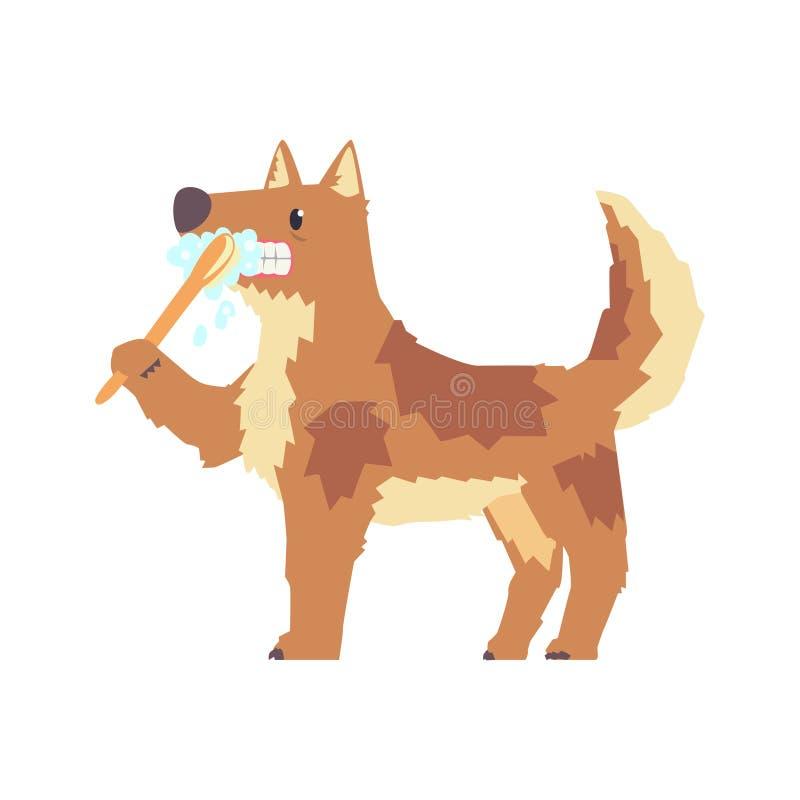 Dientes de cepillado del perro lindo de la historieta con el carácter colorido del cepillo de dientes y de la goma, ejemplo del v stock de ilustración
