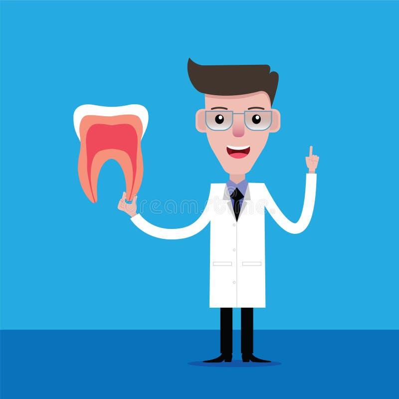 Dientes de explicación del dentista stock de ilustración