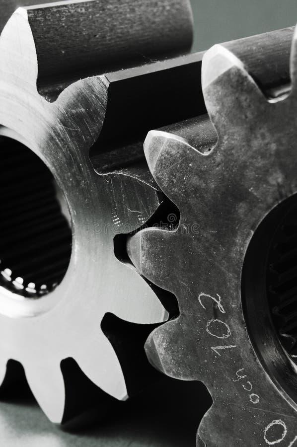 Dientes en blanco y negro imágenes de archivo libres de regalías