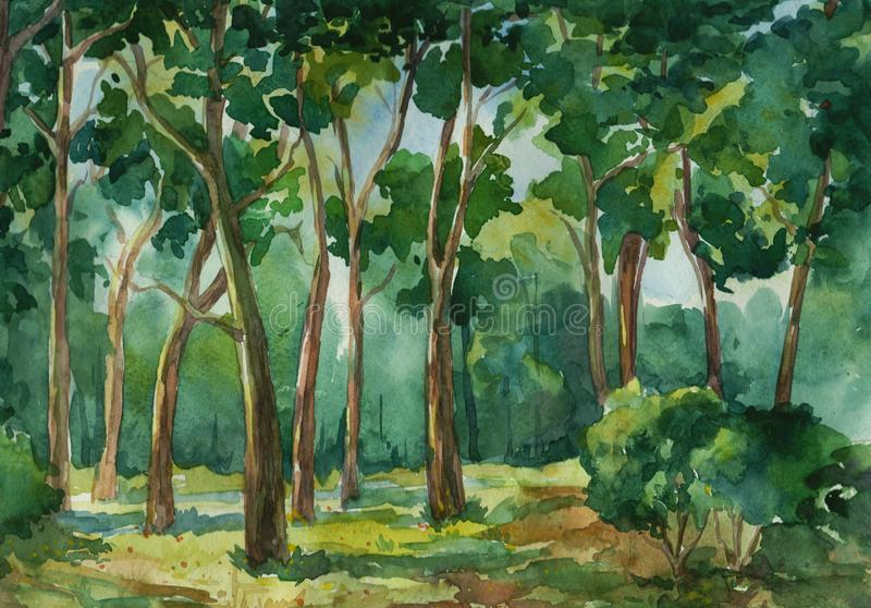 Diepe bos groene waterverf vectorillustratie als achtergrond royalty-vrije illustratie