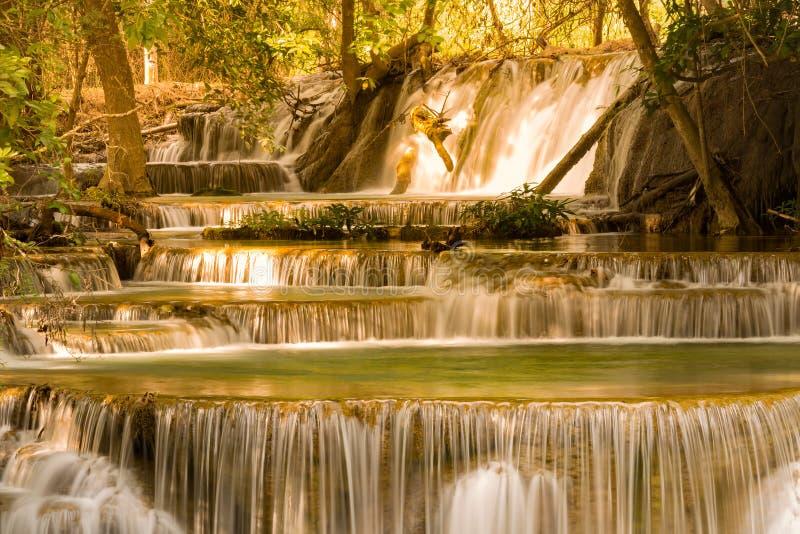 Diepe bos tropische natuurlijke waterdaling royalty-vrije stock afbeeldingen