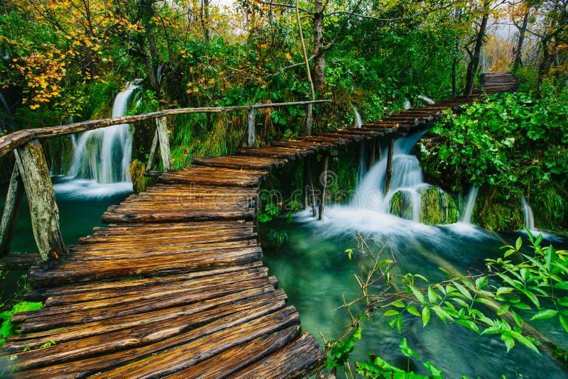 Diepe bosstroom met glashelder water met weg De meren van Plitvice royalty-vrije stock foto's