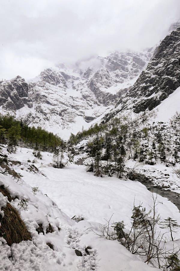 Diepe sneeuw in de vallei met rivier royalty-vrije stock fotografie
