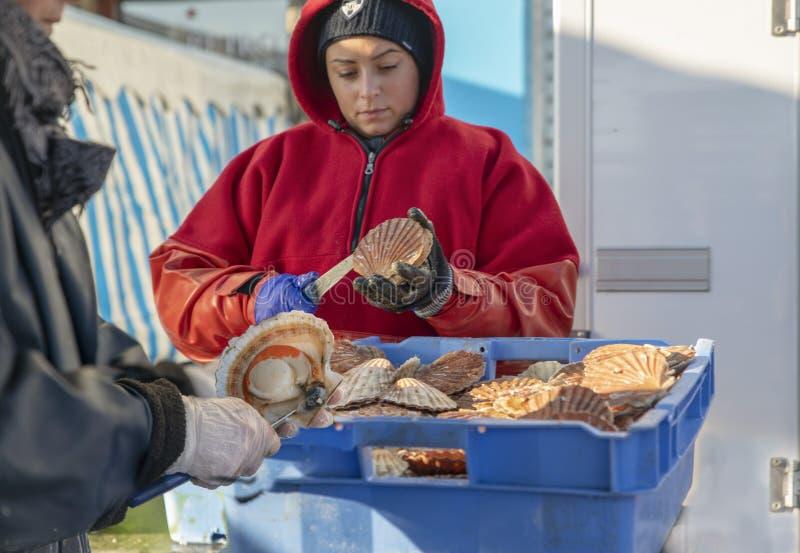 DIEPPE, FRANÇA - 17 DE NOVEMBRO DE 2018: Mulheres abertas e vieiras limpas para a venda na feira do escudo dos arenques e de viei imagens de stock