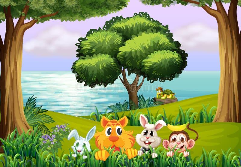 Dieren bij het bos vector illustratie