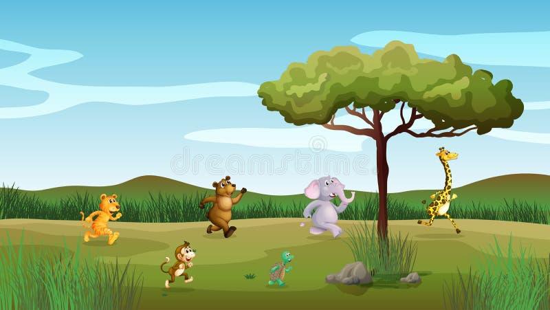 Dieren die bij de heuvel rennen vector illustratie