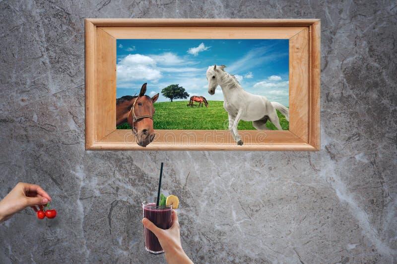 Dieren die van een omlijsting weggaan terwijl wordt aangeboden met fruit en dranken door de handen van iemand royalty-vrije stock fotografie