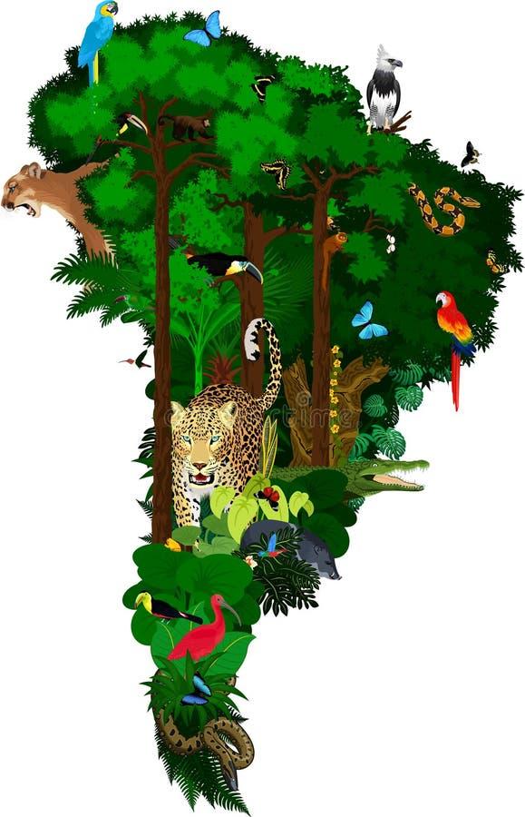Dieren en flora van Zuid-Amerika - vectorillustratie royalty-vrije illustratie