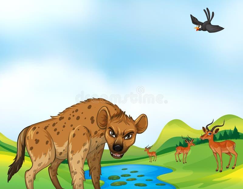 Dieren en gebied vector illustratie