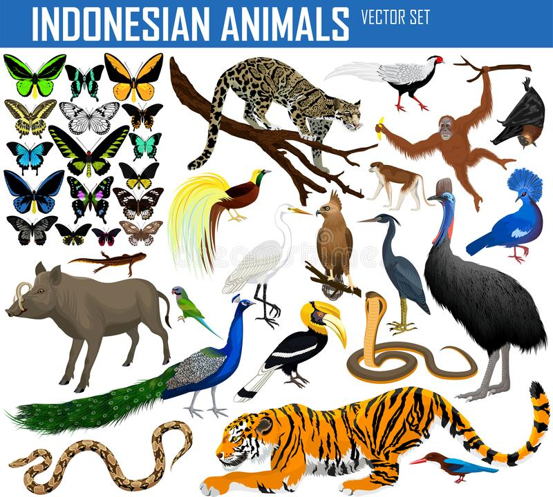 Dieren van Indonesië en Indochina - vectorreeks stock illustratie