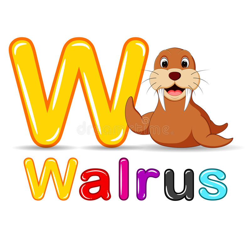 Dierenalfabet: W is voor Walrus royalty-vrije illustratie