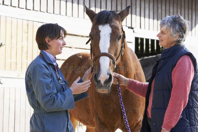 Dierenarts in Bespreking met de Eigenaar van het Paard royalty-vrije stock fotografie