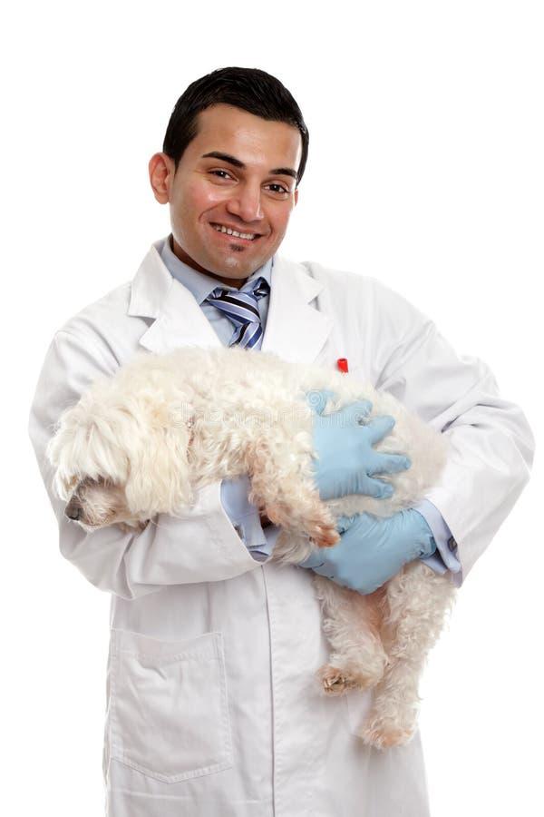 Dierenarts die een huisdierenhond draagt stock foto's
