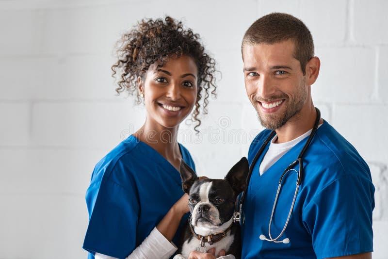 Dierenarts en verpleegster die leuke hond houden stock fotografie