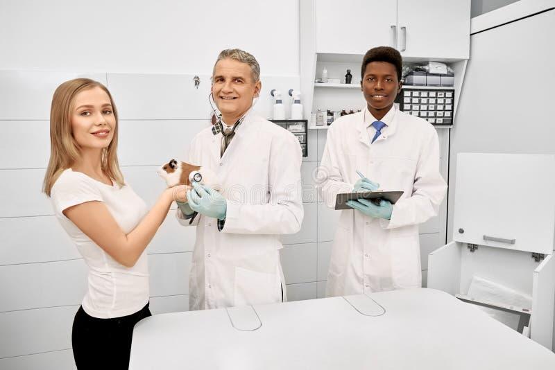 Dierenarts, medewerker en eigenaar van hamster het stellen in kliniek stock foto's