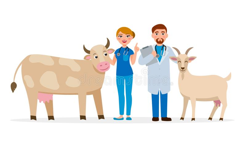 Dierenartsen en gezonde landbouwbedrijfdieren - koe en geit vector vlakke illustratie De vrolijke Medische karakters die van het  stock illustratie