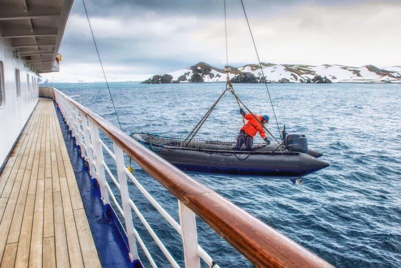Dierenriem die in de oceaan in Antarctica worden verminderd stock foto's