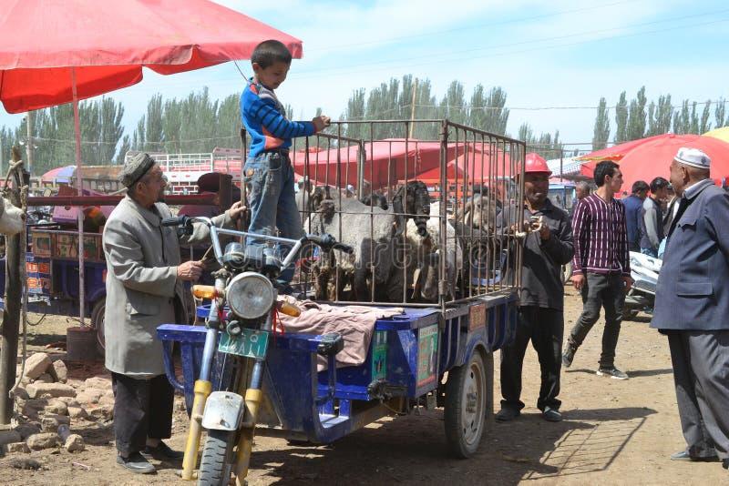 Dierlijke handelaren bij Uyghur-de bazaarmarkt van het Zondagvee in Kashgar, Kashi, Xinjiang, China stock afbeelding