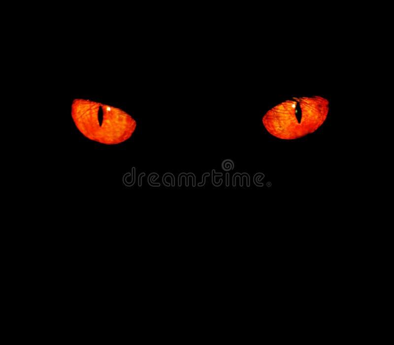 Dierlijke ogen in zwarte royalty-vrije stock afbeeldingen