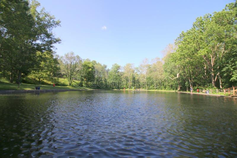 Dieser Teich ist in einem Park an diesem ruhigen Sommertag lizenzfreie stockbilder