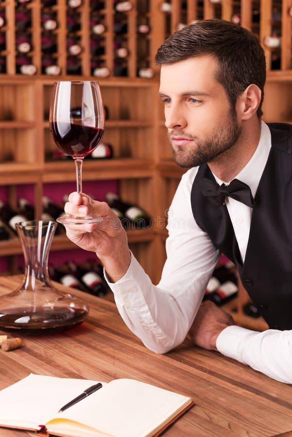 Dieser Wein ist perfekt lizenzfreie stockfotos
