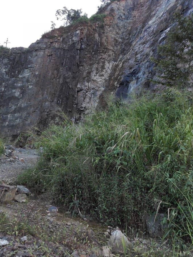 Dieses ist der Hauptbienenstock, der Stein bricht lizenzfreie stockbilder