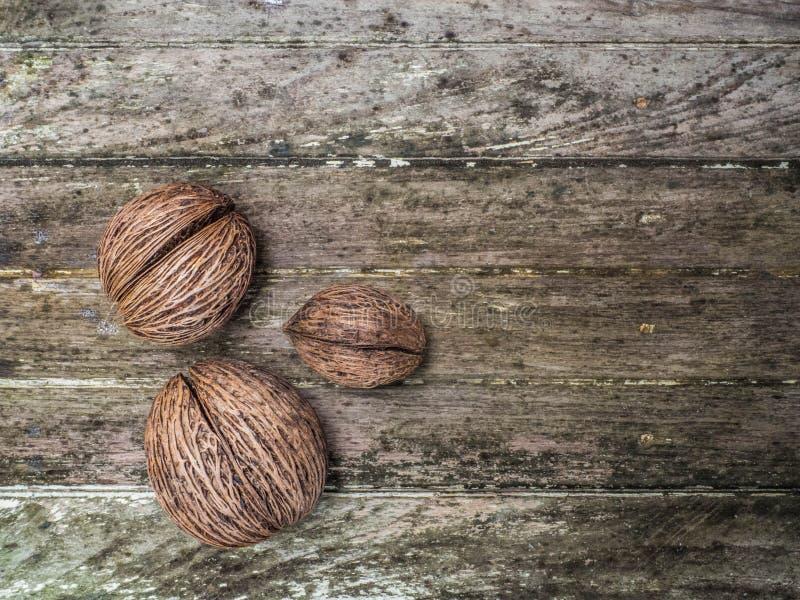 Dieses trägt getrocknete Walnuss hatte harte Oberteile mit hölzernem als Hintergrund Früchte stockbilder