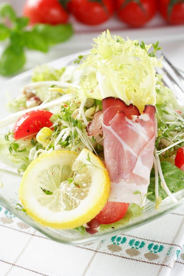diet еда стоковые изображения