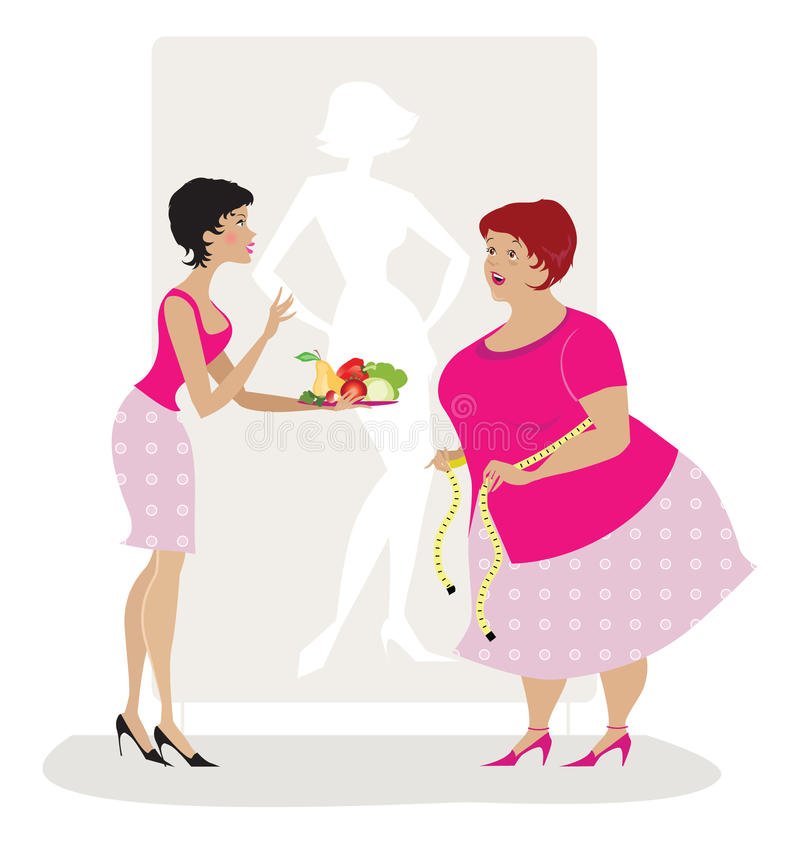 Diet advice. Vector illiustration of a lady giving diet advice to overweight woman royalty free illustration